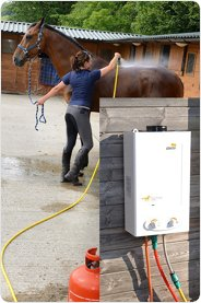 Hot Horse Shower Spa